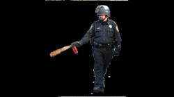 sergeant-pepper